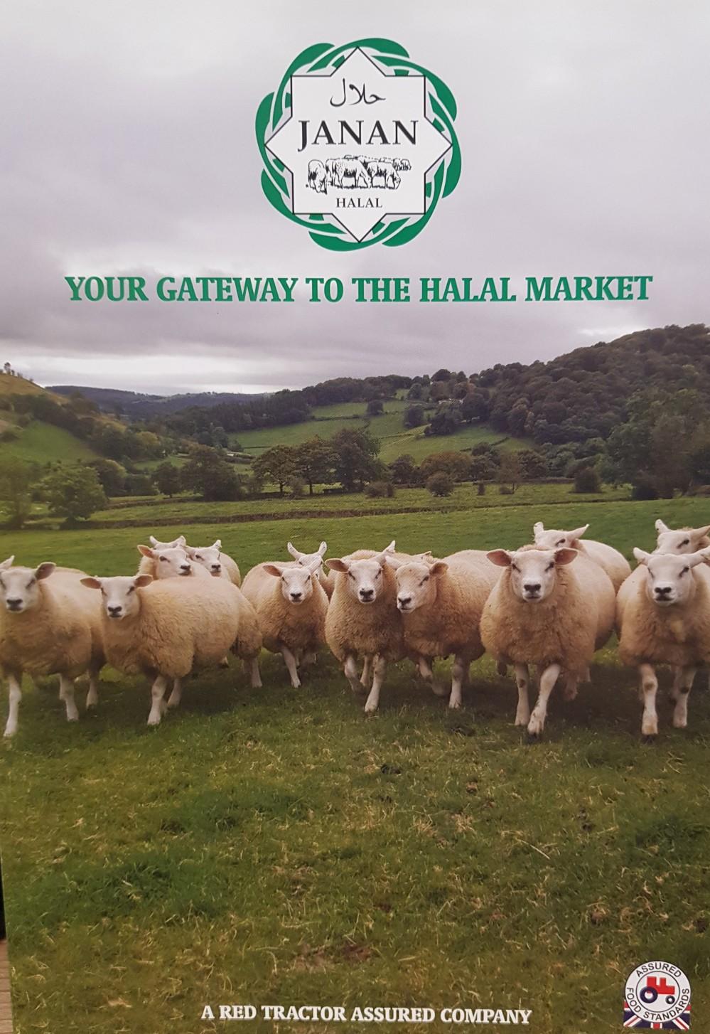 Halal – Islamic Ads Network
